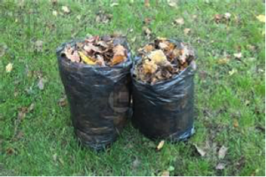 garbage bags leaves