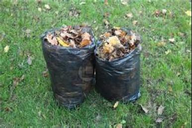 garbage bags leaves
