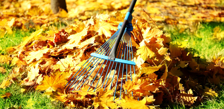 The Importance of Raking